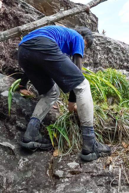 サンダルでアウヤンテプイを登った本庄さん