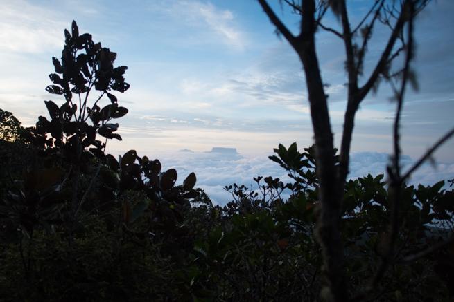 雲海に浮かぶテプイ