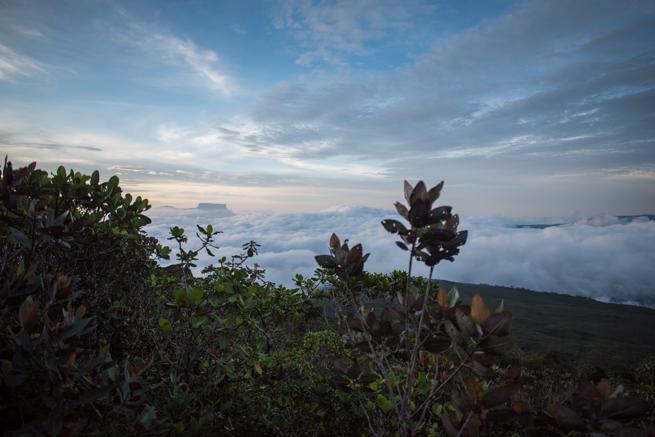 アウヤンテプイから見下ろした雲海