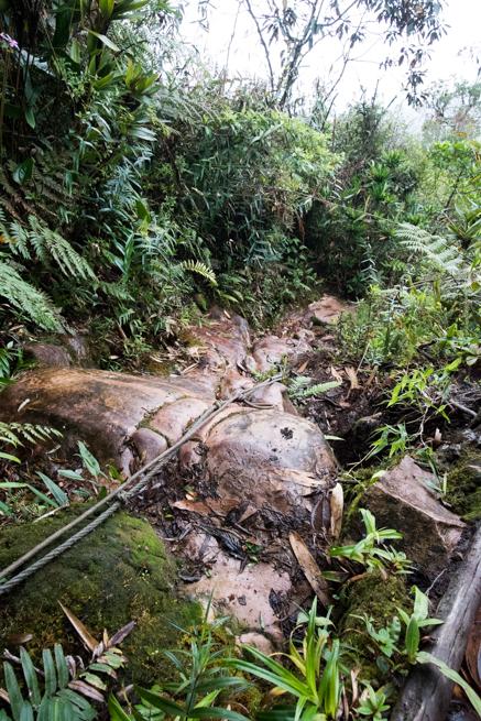 アウヤンテプイの滑る石とロープ