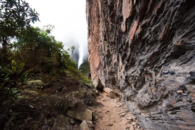 アウヤンテプイで断崖絶壁に到着