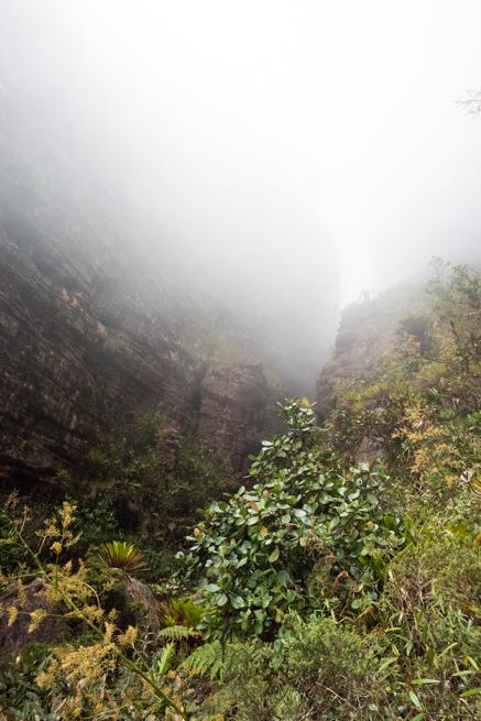 アウヤンテプイの霧