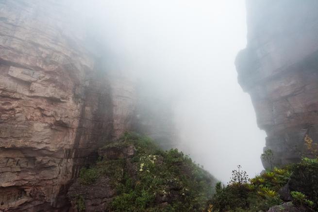 アウヤンテプイの登山ルート