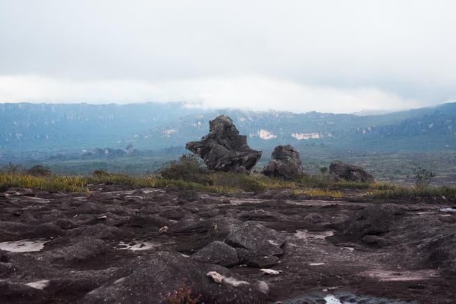 アウヤンテプイの頂上にある奇妙な石