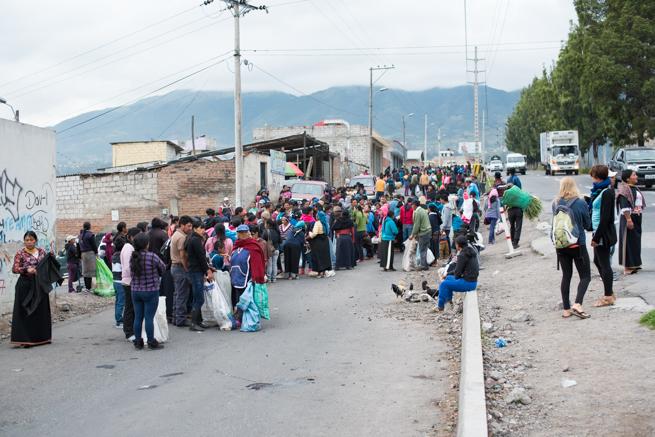 エクアドルのオタバロの家畜市場