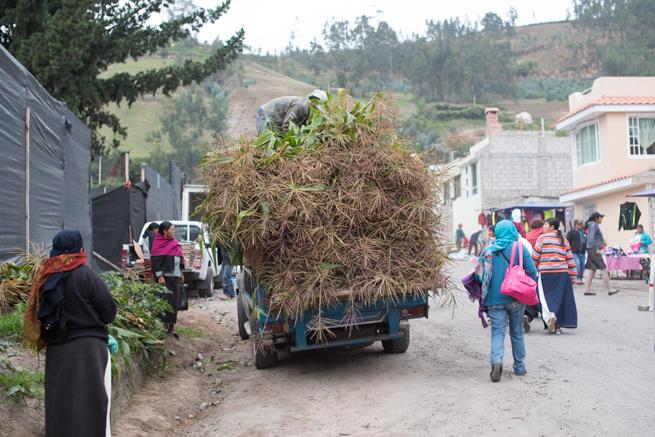 エクアドルのオタバロの家畜市場に入る車