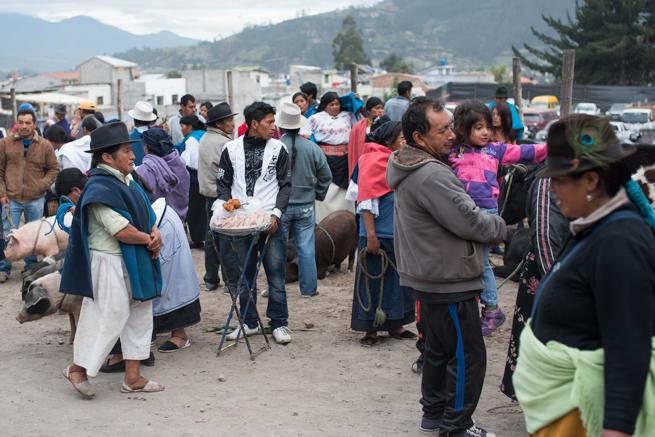 エクアドルのオタバロの家畜市場の群衆