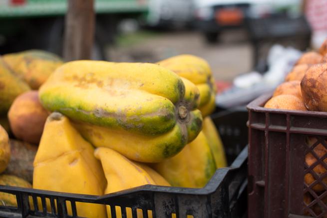 エクアドルのオタバロの動物市の謎の野菜