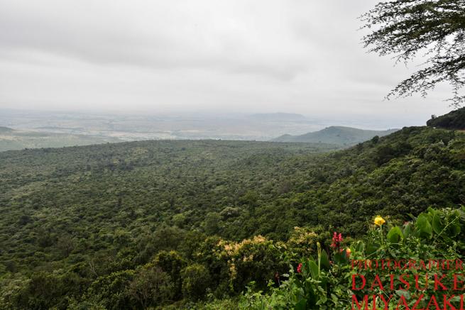 ケニアのグレート・リフト・バレーの眺め