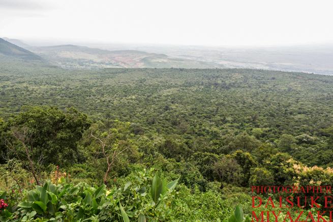 ケニアのグレート・リフト・バレーの景色