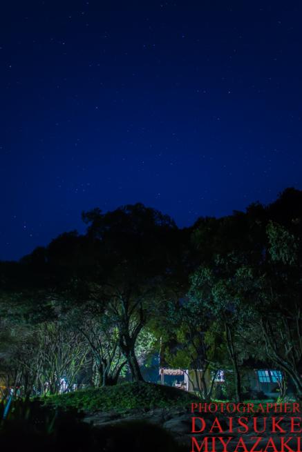 マサイマラ国立公園の星空