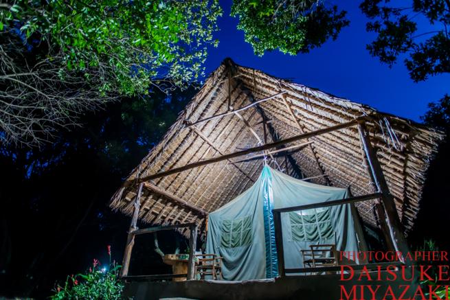 マサイマラ国立公園の常設テント