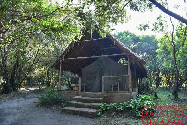 マサイマラ国立公園のホテル
