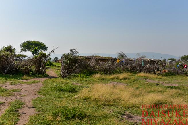 マサイ族の村の外観