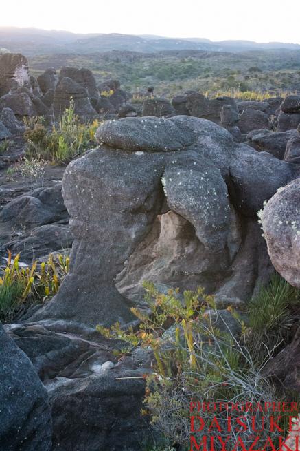 アウヤンテプイのゾウみたいな石