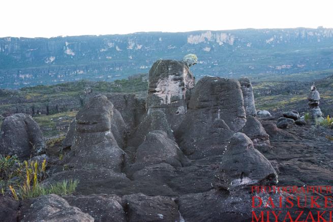 ギアナ高地で風化した石