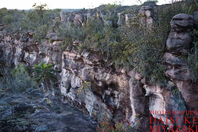 ギアナ高地の頂上の裂け目
