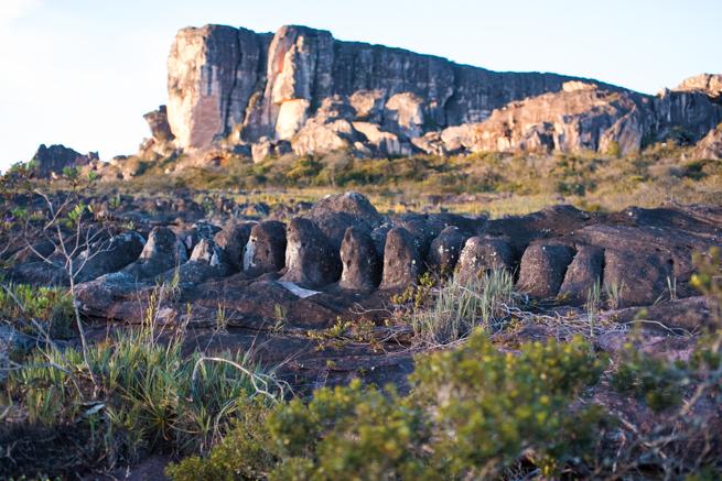 アウヤンテプイの頂上に並ぶ奇石