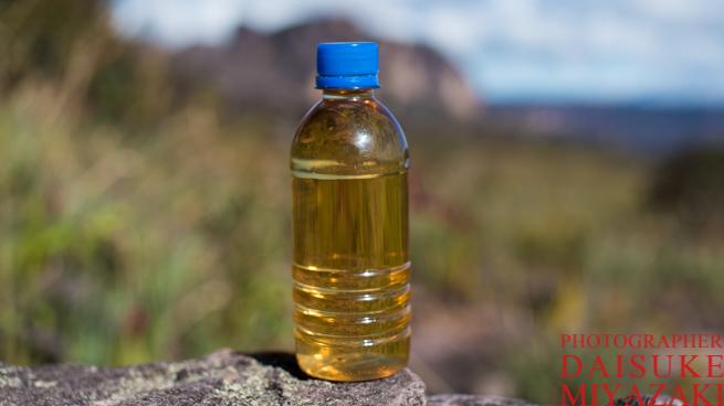 アウヤンテプイの頂上の水は茶色い
