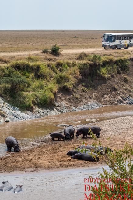 マラ川と観光バス