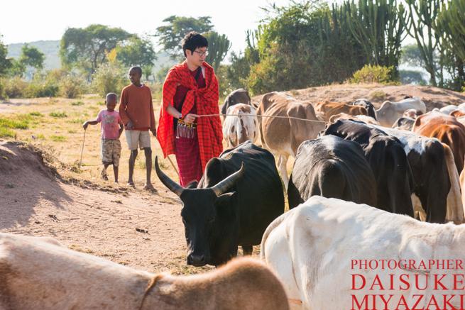 子供と一緒にマサイ族の牛を川へ