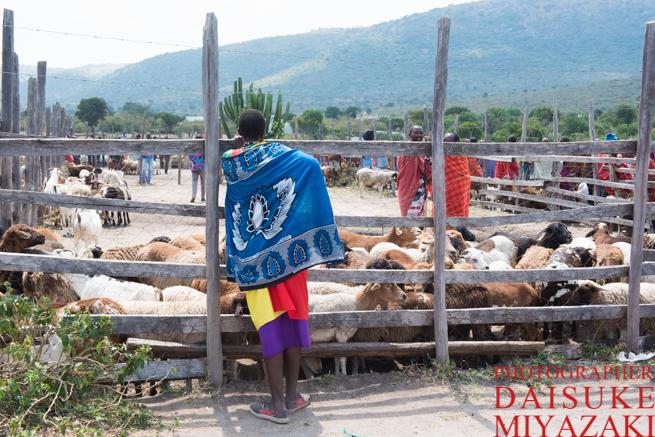 たたずむマサイ族の女性