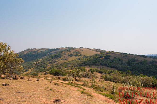 マサイ村の山の山頂付近