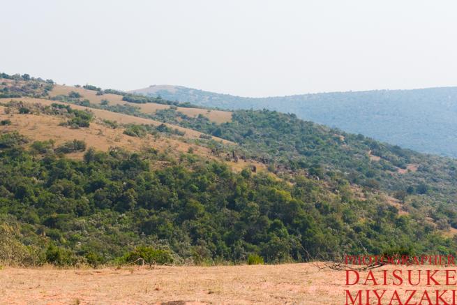 山の反対側を見るマサイ族