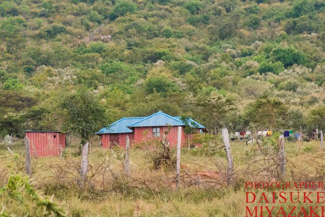 裕福なマサイ族は綺麗な家に住んでいる