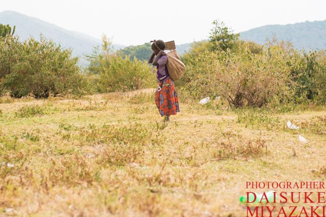 水を運ぶマサイ族の少女