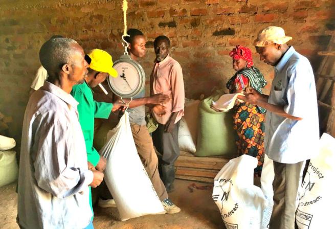 ケニアの大豆の重さを測定