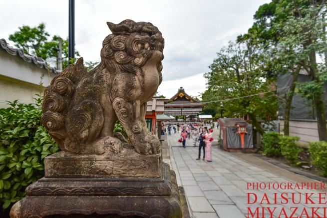 京都の狛犬