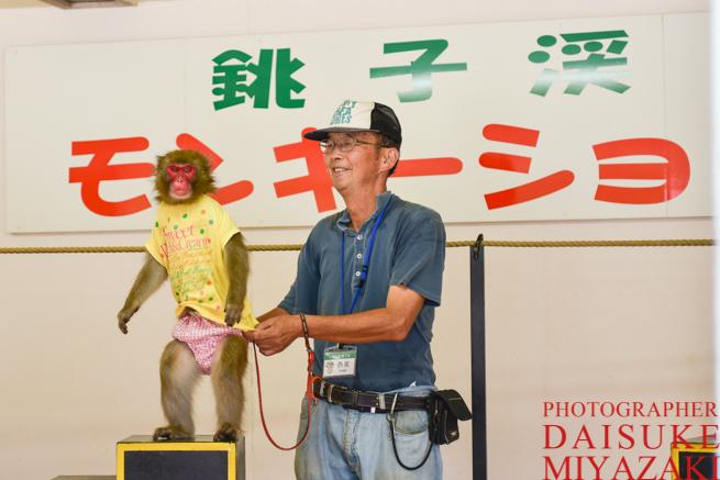 サルと調教師