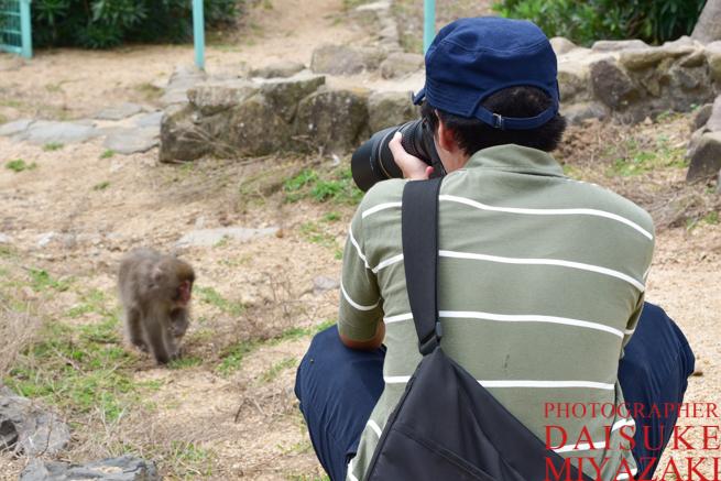 サルを撮影するカメラマン