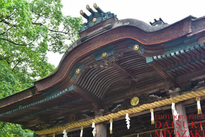 金比羅山の神社
