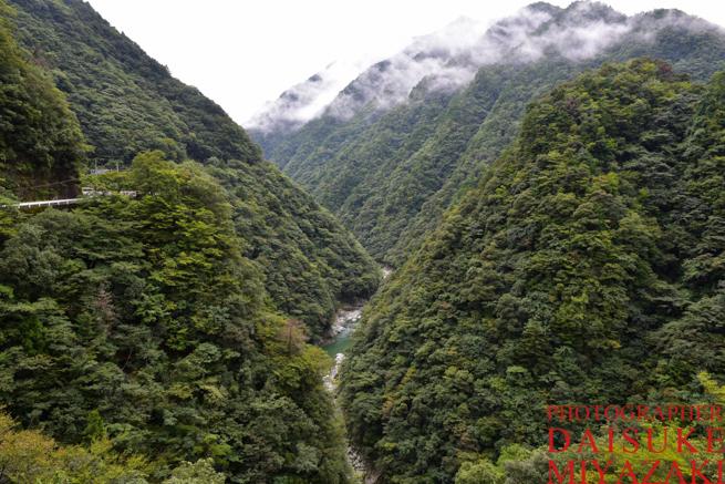 徳島県の渓谷で撮影