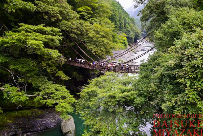 かずら橋の写真