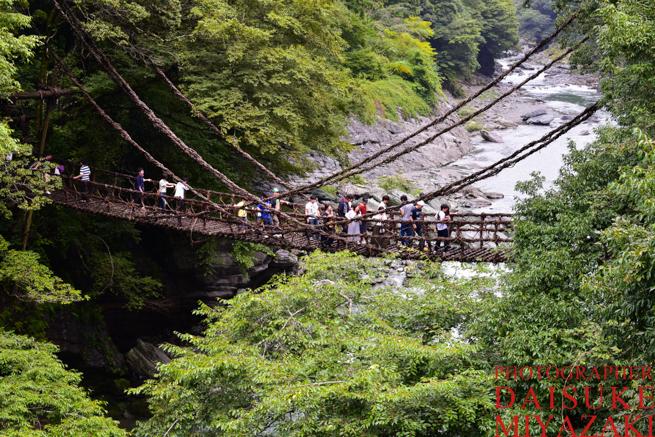 徳島県の観光地かずら橋