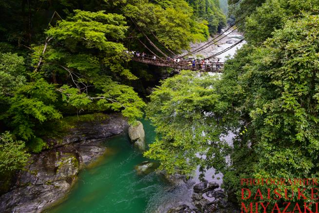 濁った川とかずら橋