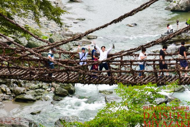 かずら橋を渡る友人