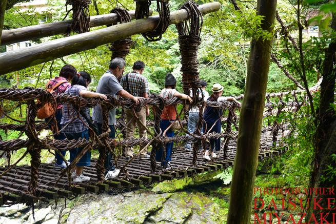 かずら橋を渡る旅行者