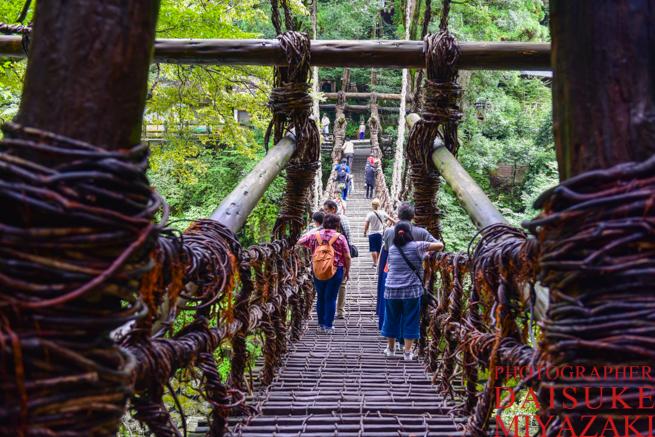 徳島県の葛橋