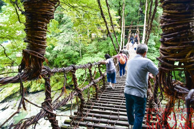 かずら橋を渡る観光客たち