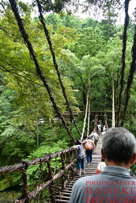 かずら橋を歩く