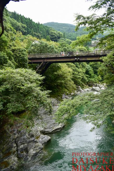 かずら橋から新しい橋を見る
