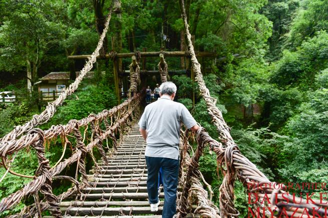 かずら橋を慎重に歩く