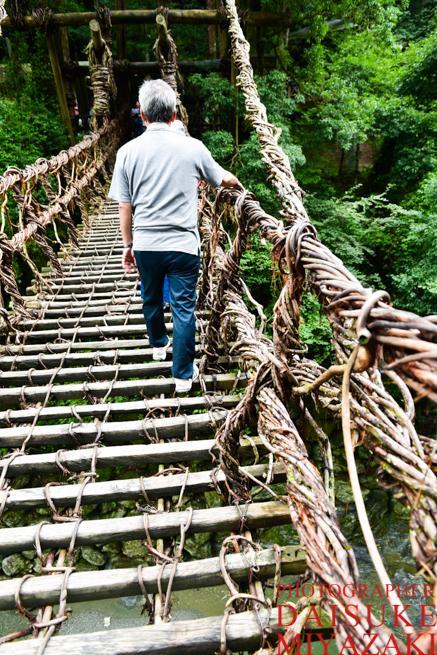 かずら橋を歩いて渡る