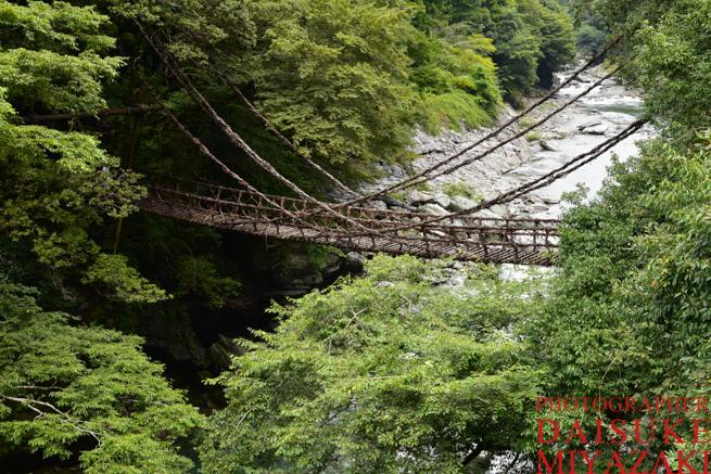 誰も居ないかずら橋