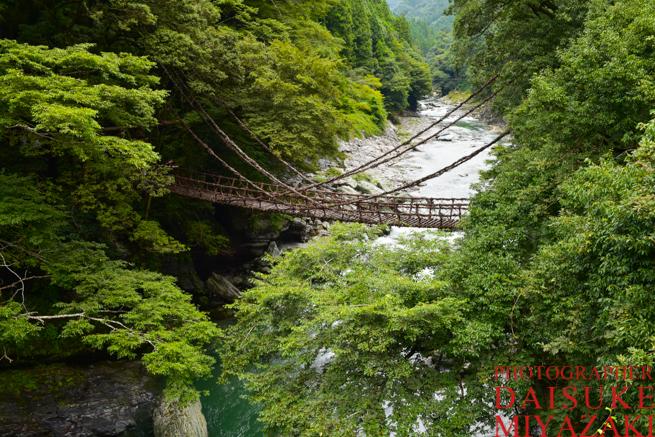 徳島県のかずら橋