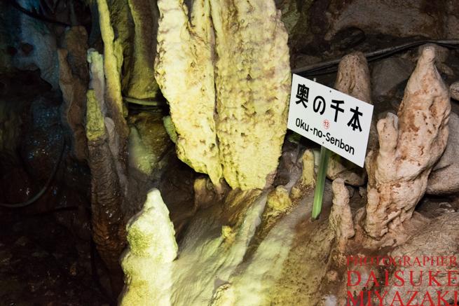 龍河洞の奥の千本